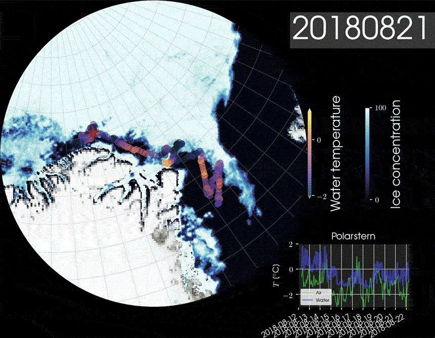 EINMALIGE VERWENDUNG Animation / Animiertes Gif - Polarstern