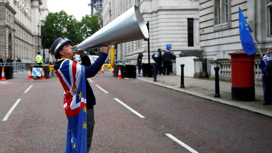 Anti-Brexit-Demonstrant an der Downing Street in London am 11. Juni