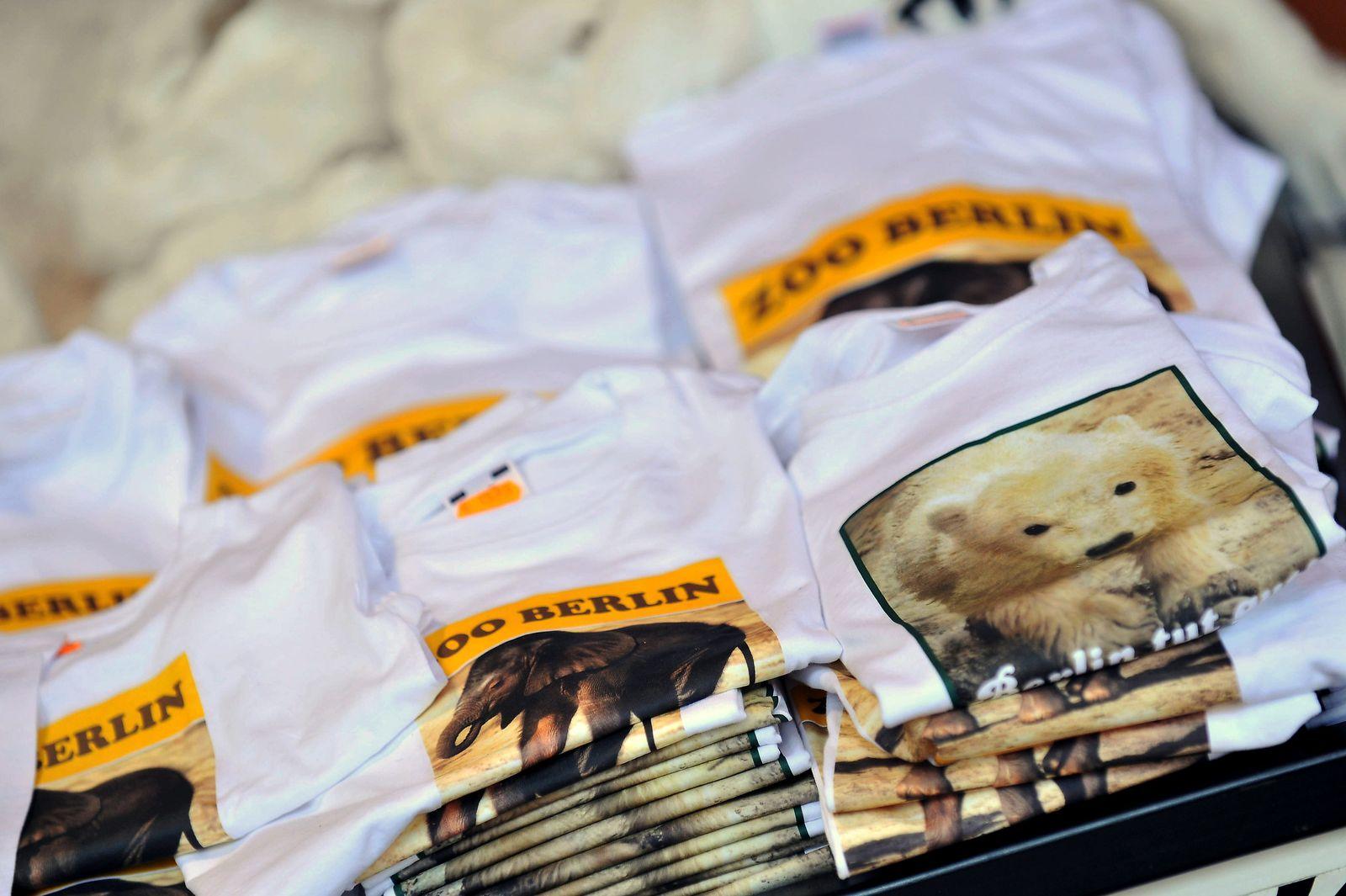 Eisbär Knut vor Gericht - Streit um Markenrechte
