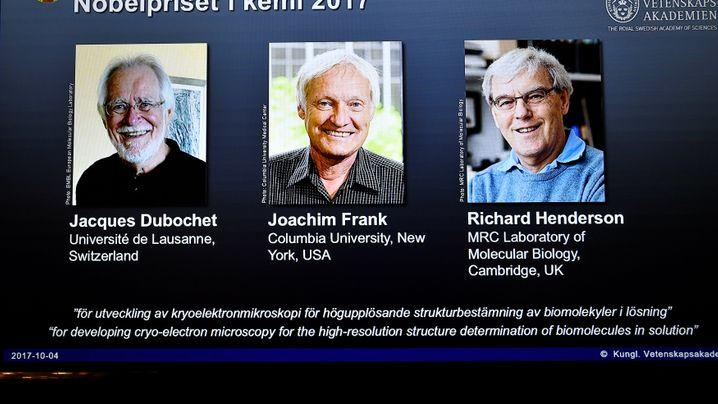Kryo-Elektronenmikroskopie: Biomoleküle im Blick