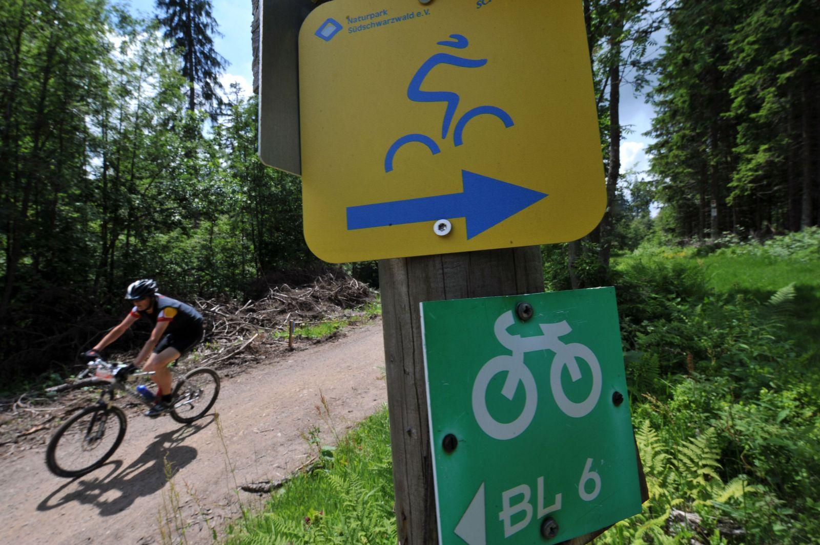 Schwarzwald/ Mountainbike