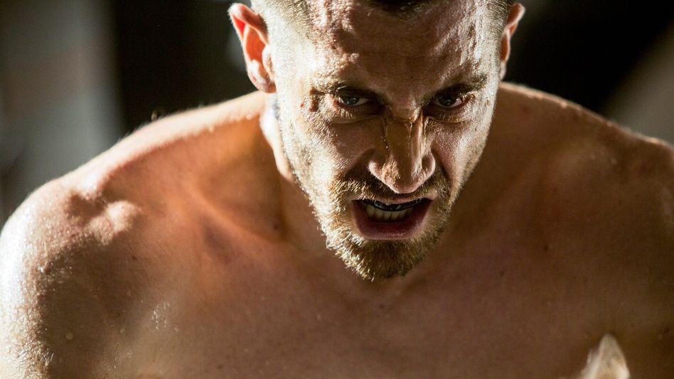 "Boxer-Drama ""Southpaw"": Wie ein blöder Stier"