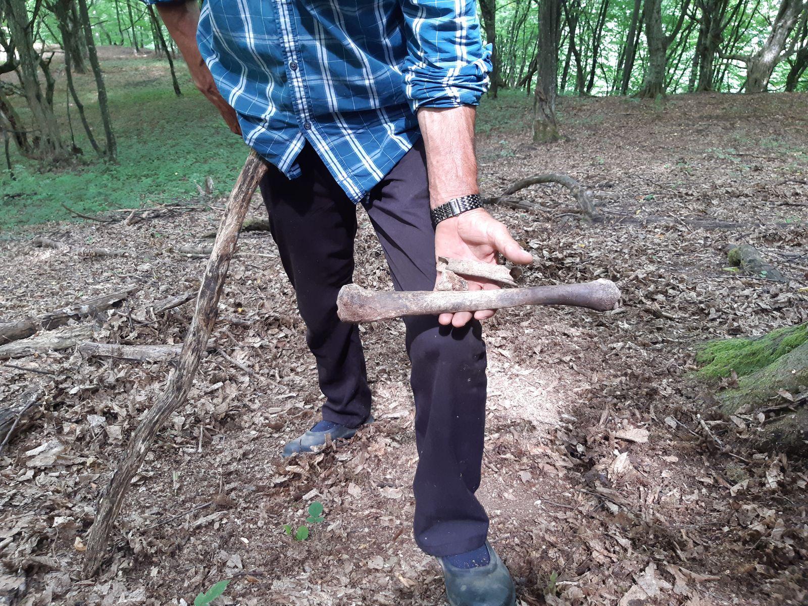 Ramiz Nukić sucht nach menschlichen Überresten 9