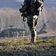 Australische Armee entschuldigt sich für mutmaßliche Kriegsverbrechen