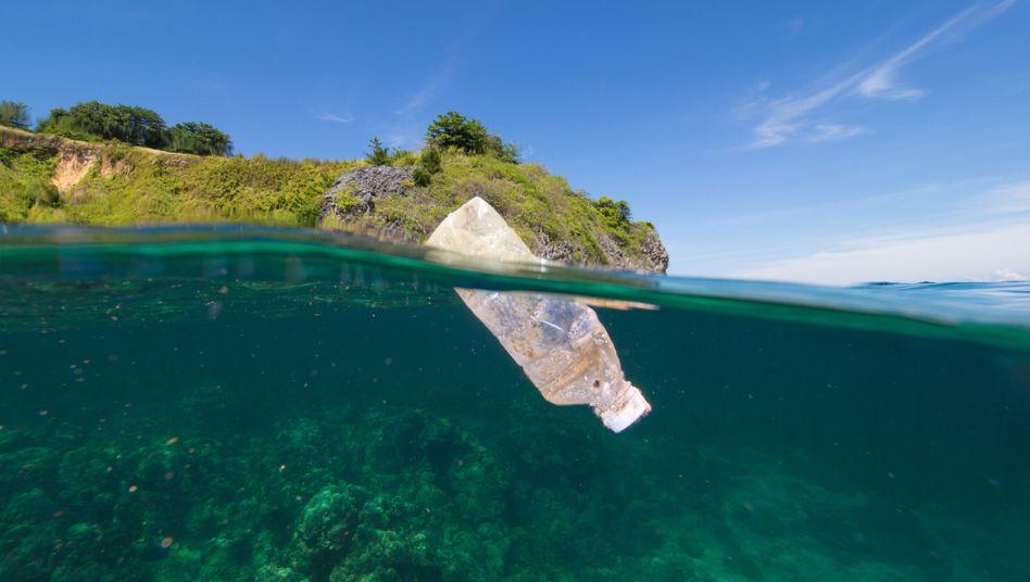 Zwischen den Jahren 1950 und 2015 wurden weltweit 8,3 Milliarden Tonnen Plastik produziert