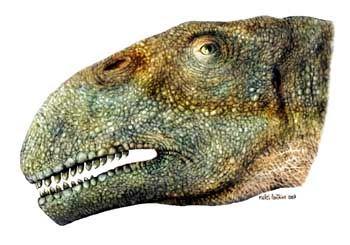 """""""Tazoudasaurus naimi"""": So könnte die neun Meter lange Echse nach Meinung der Forscher ausgesehen haben"""