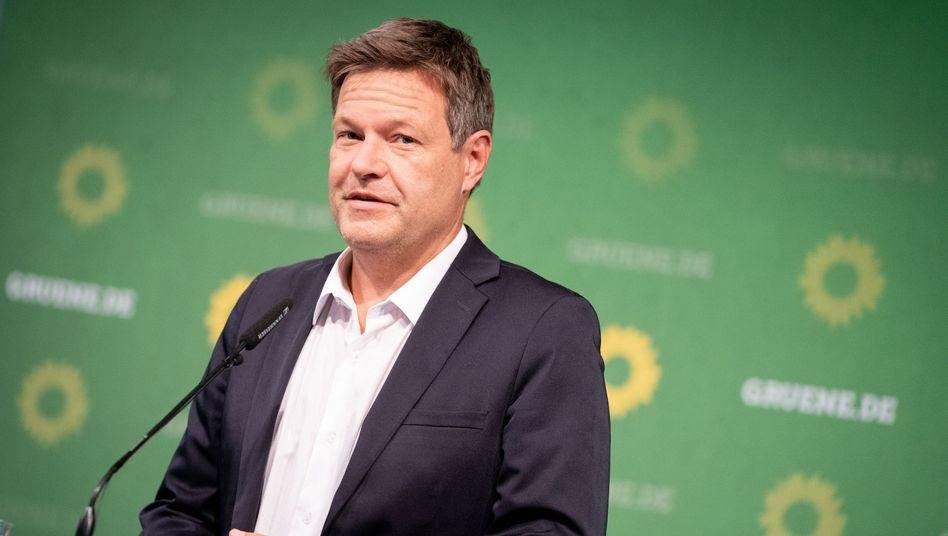 """Grünenchef Habeck: """"Man hat einen Plan, was man will"""""""
