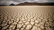 Ein Drittel der Weltbevölkerung könnte bis 2070 unter großer Hitze leiden