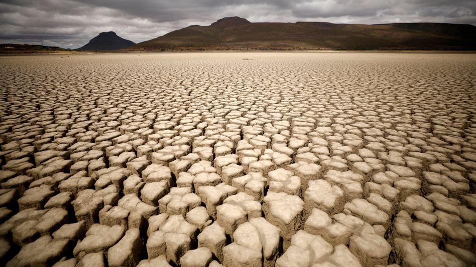 Ausgetrockneter Boden in Südafrika (Archivfoto von 2019)