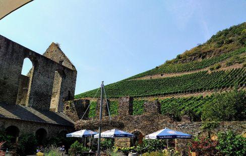Weingut Kloster Marienthal im Ahrtal: Die Lohwegs sind Weinliebhaber
