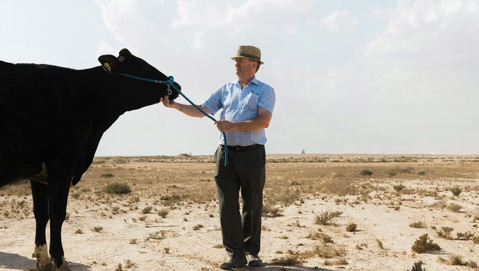 Farmer »Mister John« mit deutscher Kuh in der Wüste: »Die Nation steht hinter uns«