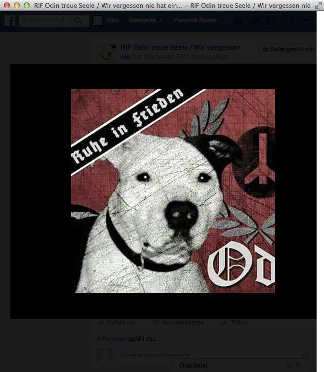 NUR ALS ZITAT Screenshot Facebook/ erschossener Hund/ Nazi/ Polizei/ Odin