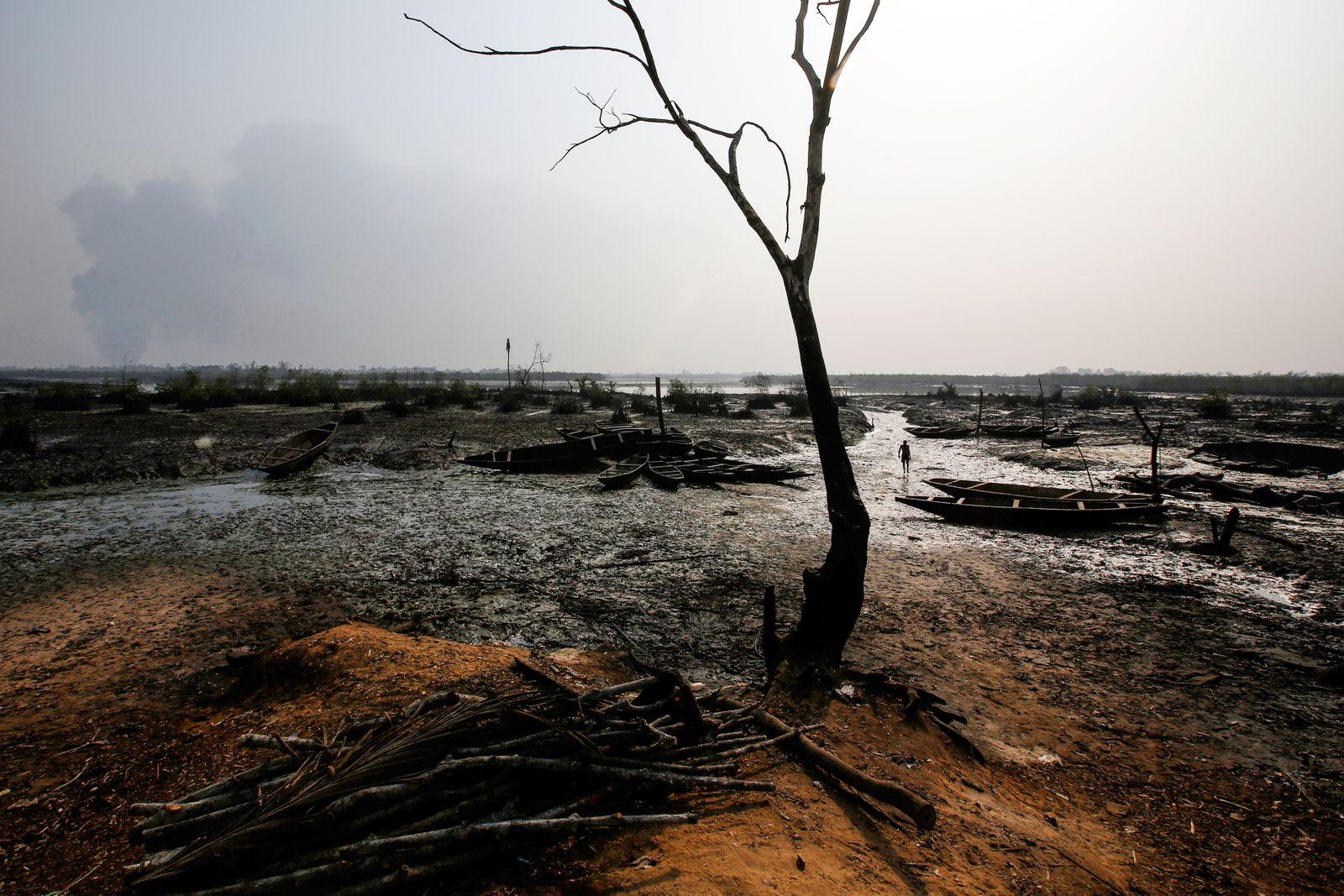 Niger Delta Oil Pollution
