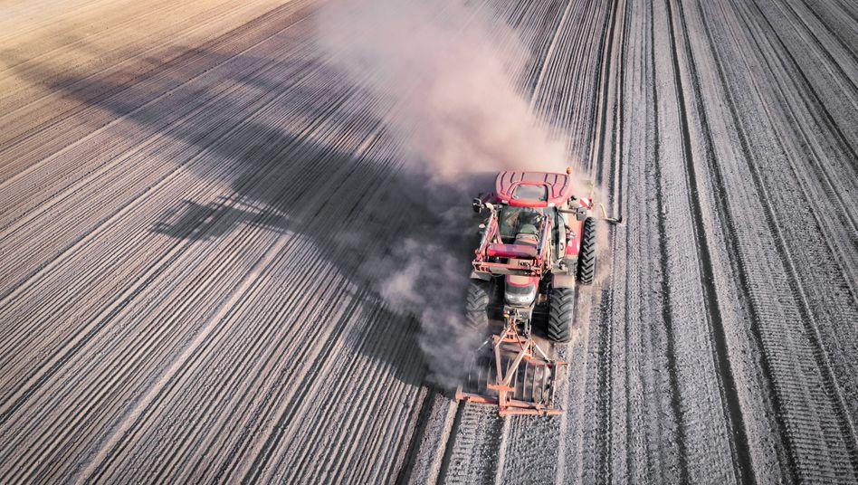Feld in Niedersachsen: In den vergangenen Jahren war es in Deutschland viel zu trocken