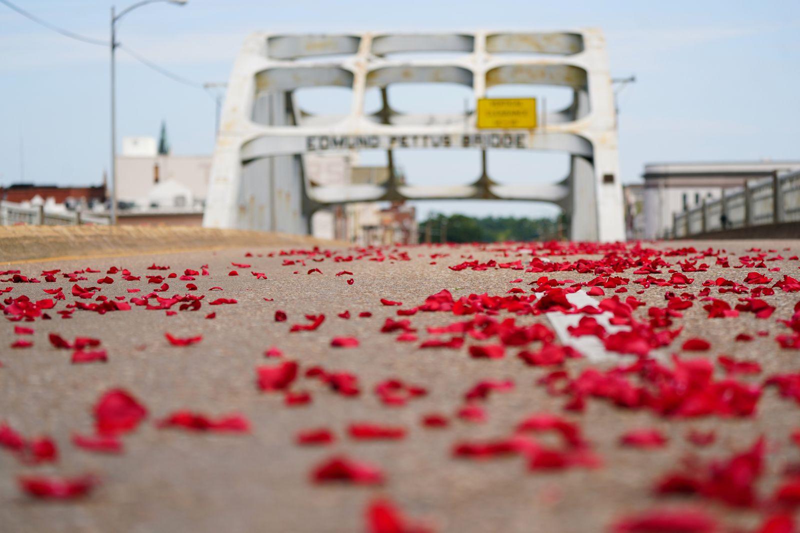 Rose petals are scattered on the Edmund Pettus Bridge in Selma