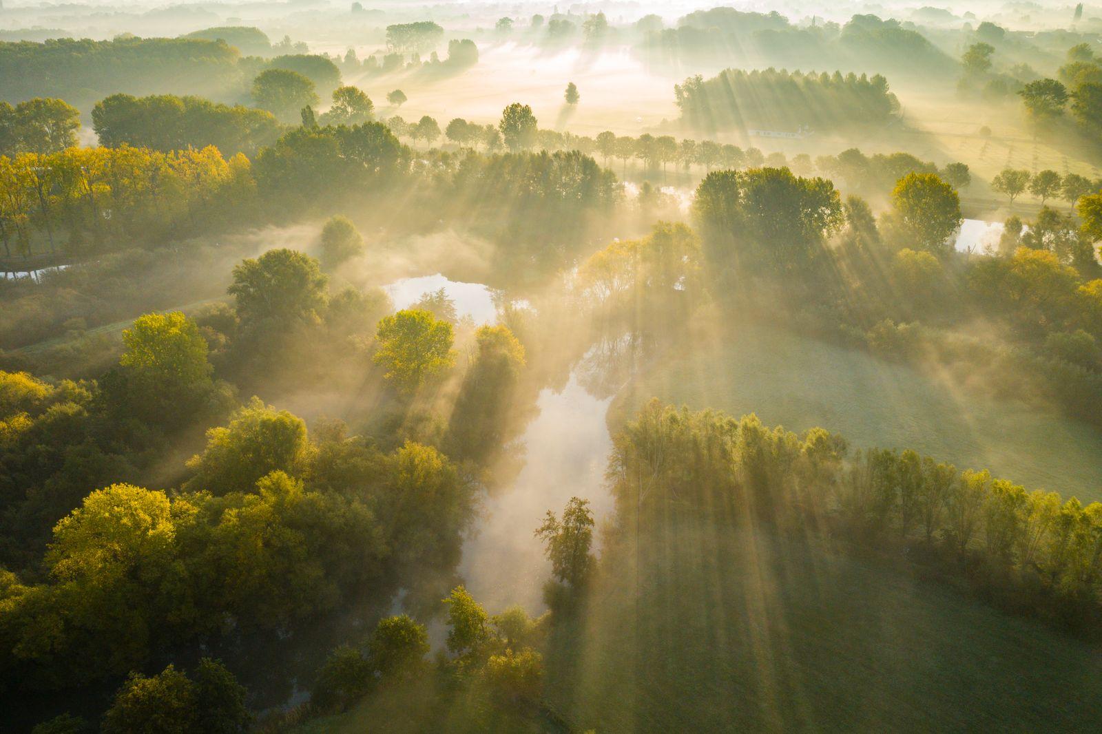 Nature TTL POTY 2020/ Landscape