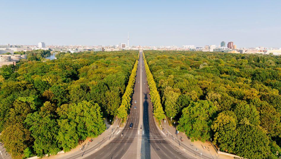 Berlin-Tiergarten (Symbolbild): Laut Studie war der stärkste CO2-Rückgang im Transportsektor zu beobachten