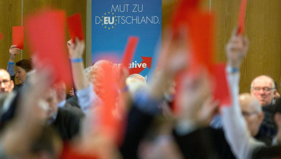 AfD-Delegierte in Schleswig-Holstein