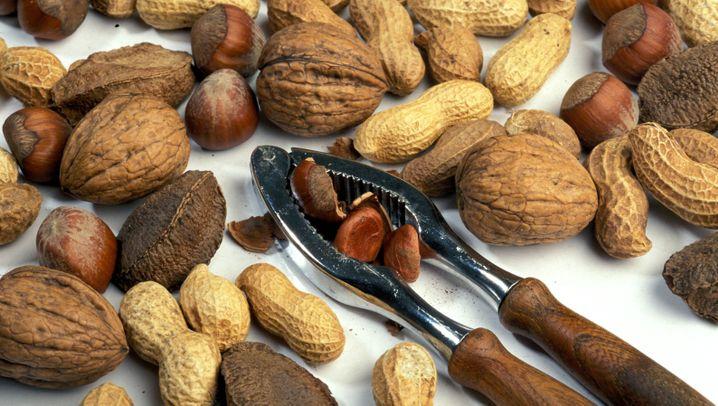 Kalorien, Fett, Nährstoffe: So gesund sind Nüsse