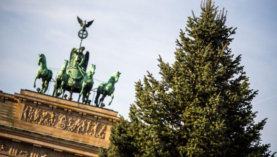 Weihnachtsbaum vor dem Brandenburger Tor: In Berlin darf Weihnachten nur in kleinerer Runde gefeiert werden