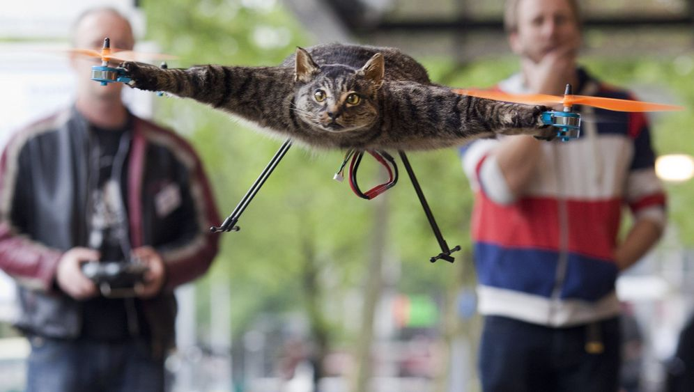 Photo Gallery: Orville the Cat Helicopter