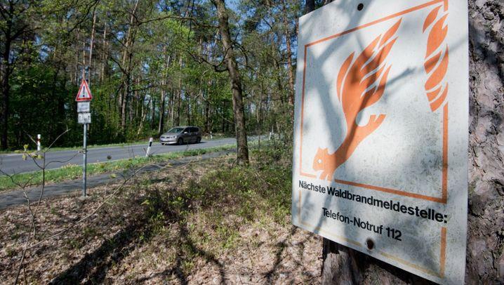 Stufe 5 von 5: Drohende Waldbrände in deutschen Forsten