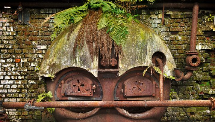 Lost Places: Wie die Natur Ruinen in Kunst verwandelt