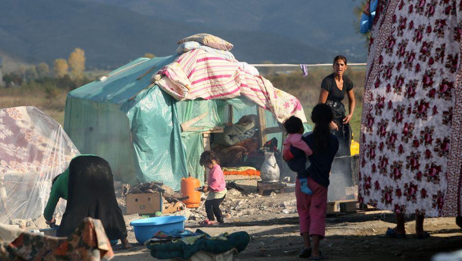 Roma in Albanien: Laut Auswärtigem Amt werden sie in ihrer Heimat systematisch diskriminiert