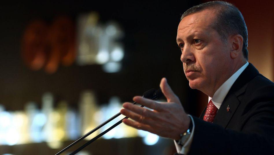 Präsident Erdogan: Westliche Medien verbreiten Lügen über die Türkei