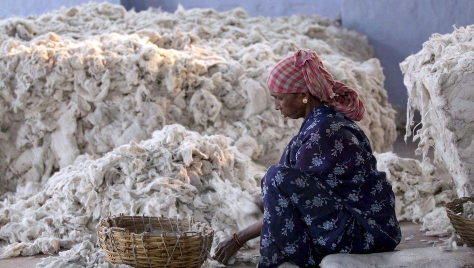 Baumwollmarkt in Kalkutta: Höhere Ernteerträge dank Gentechnik