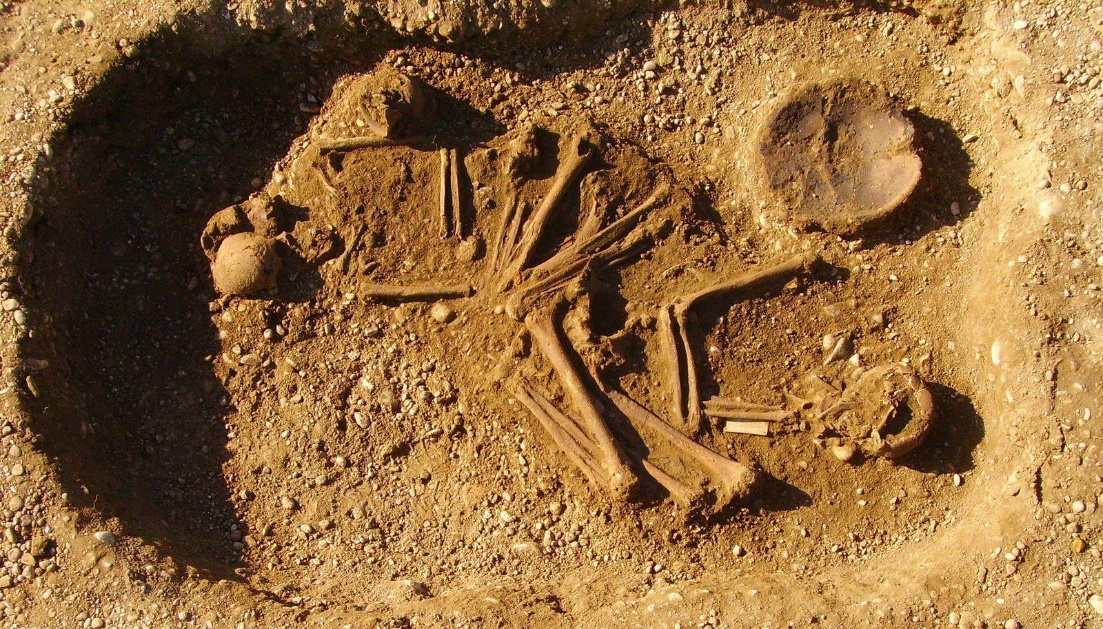 SPERRFRIST 4. SEPTEMBER 21.00 UHR EINMALIGE VERWENDUNG Skelett / Haunstetten