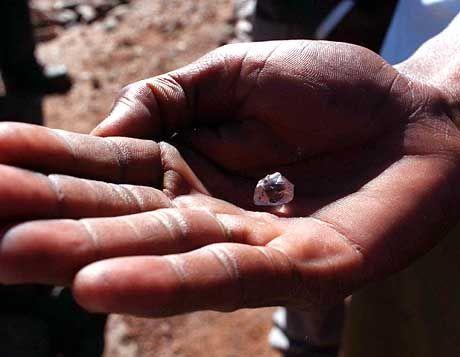 Weniger als ein Drittel der Exporte ist legal: Diamant