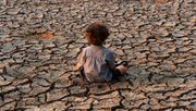 Diese Klimapolitik nutzt vor allem den Reichen