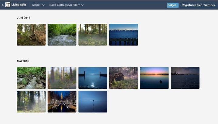 """Meditative Momente: """"Living Stills"""" auf Tumblr"""