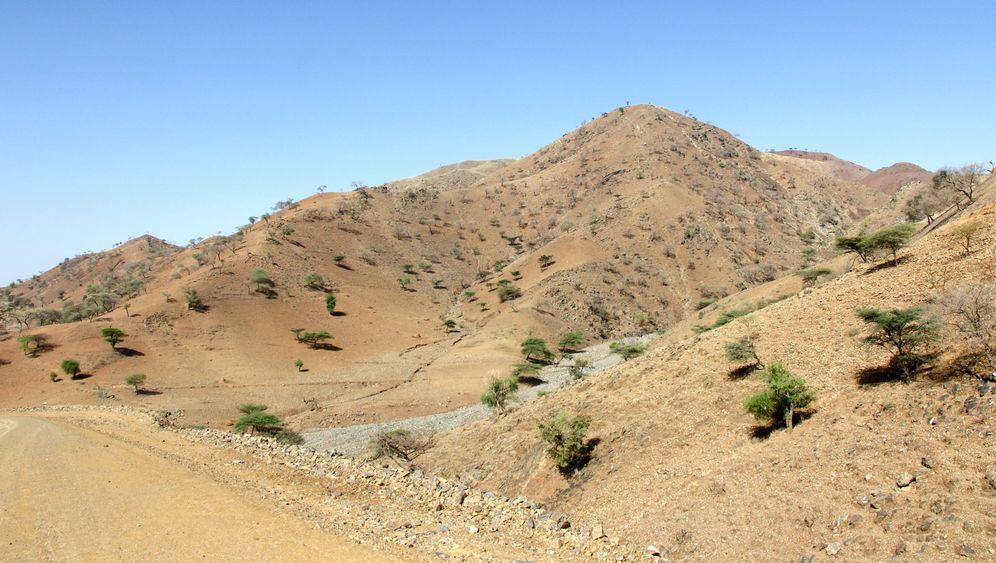 Hochland in Nord-Äthiopien: Blühende Landschaften