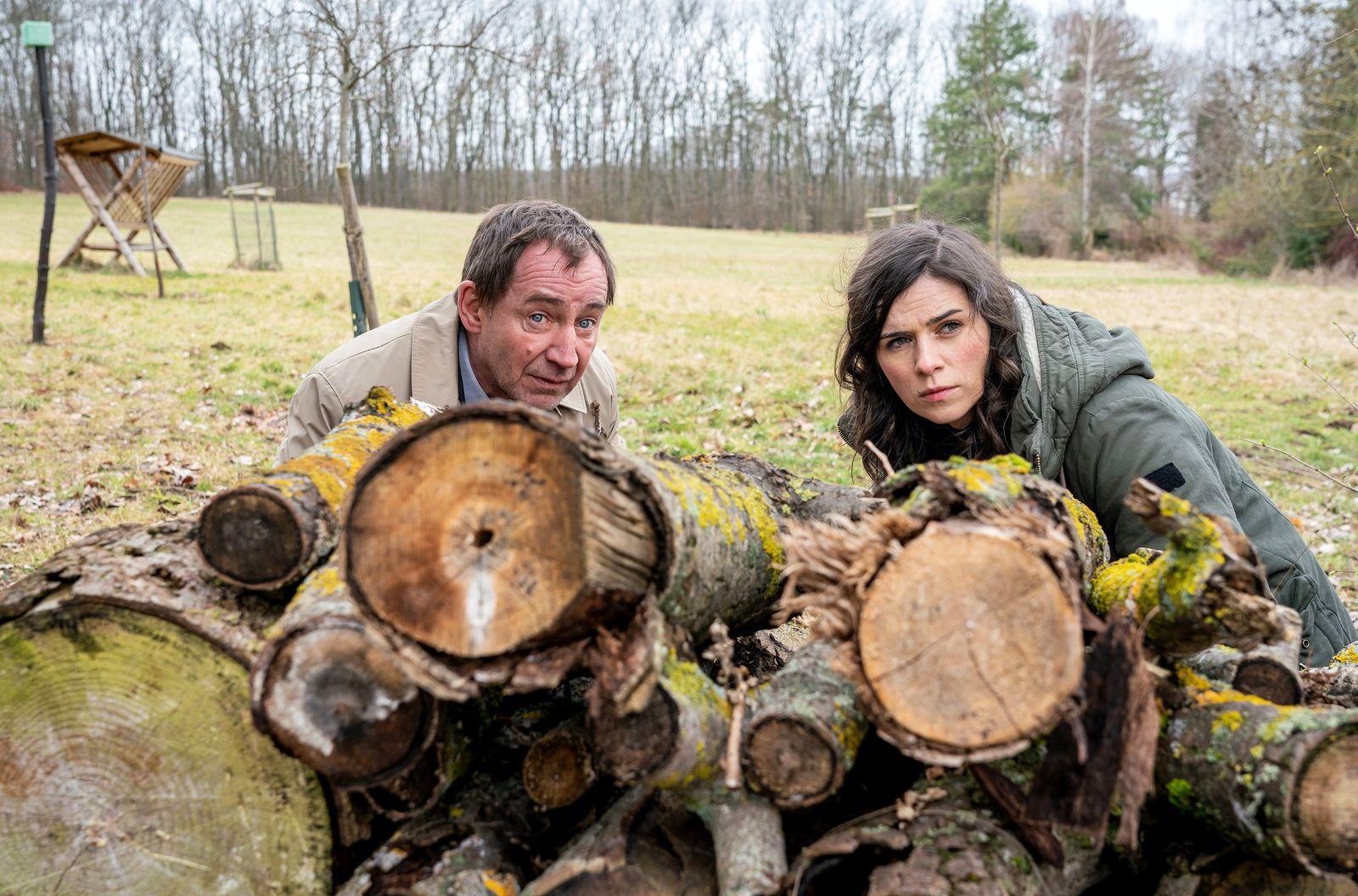 TV/ Tatort: Der feine Geist