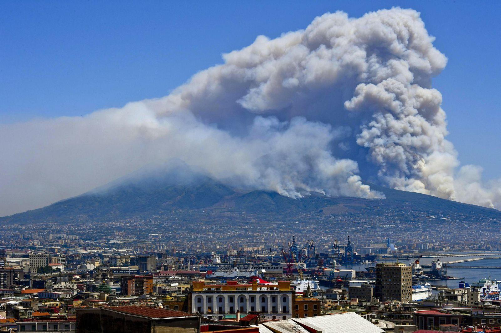 Italien/ Vesuv/ Waldbrände