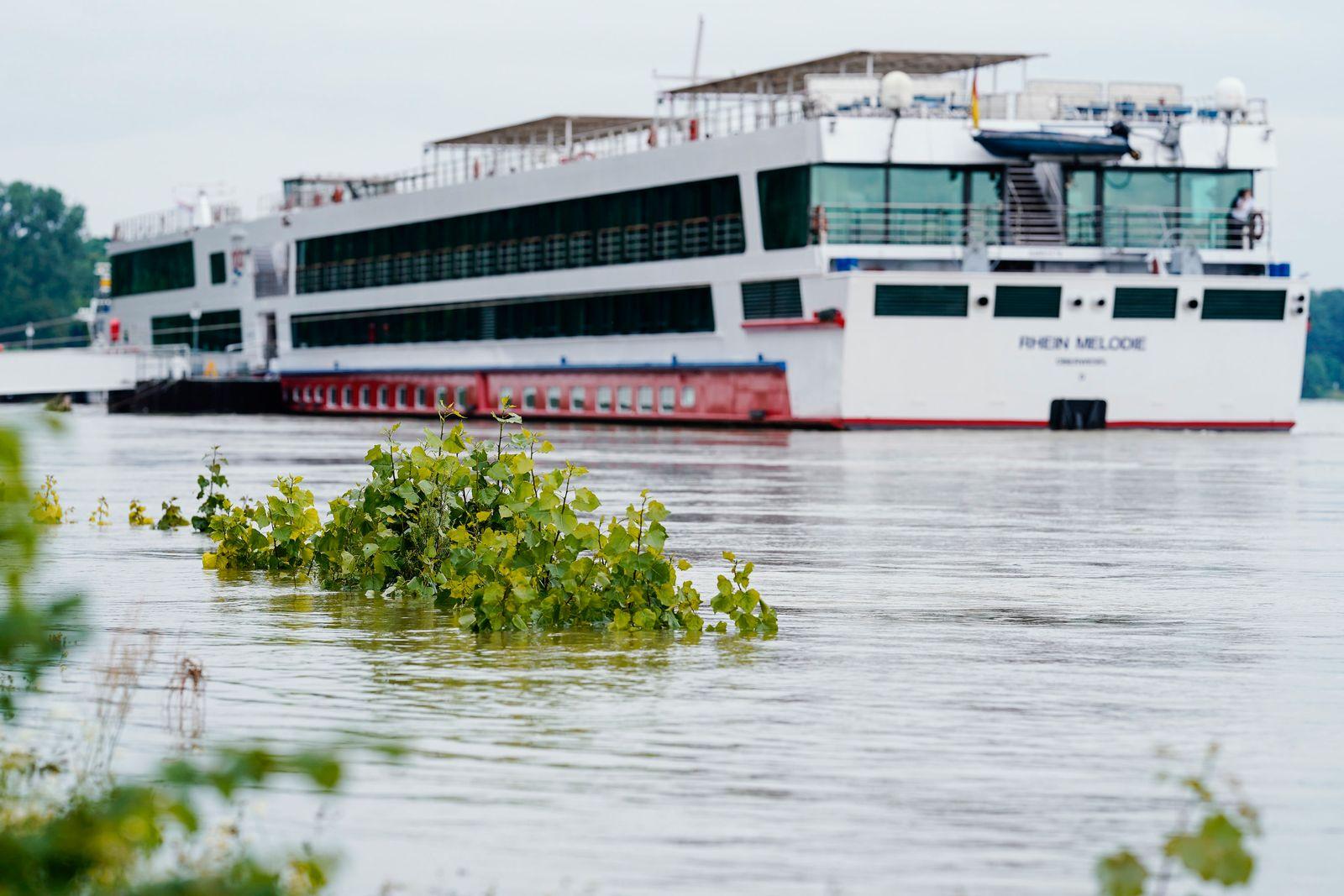 Hochwasser - Rhein