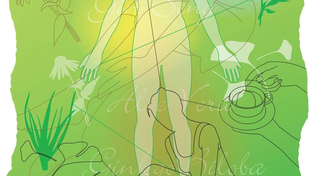 Gingko, Johanniskraut, Distel: Wie Pflanzen die Wirkung von Medikamenten beeinflussen