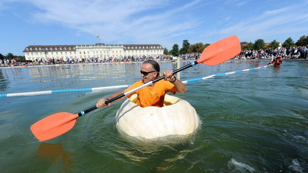 Photo Gallery: Off to the Pumpkin Races