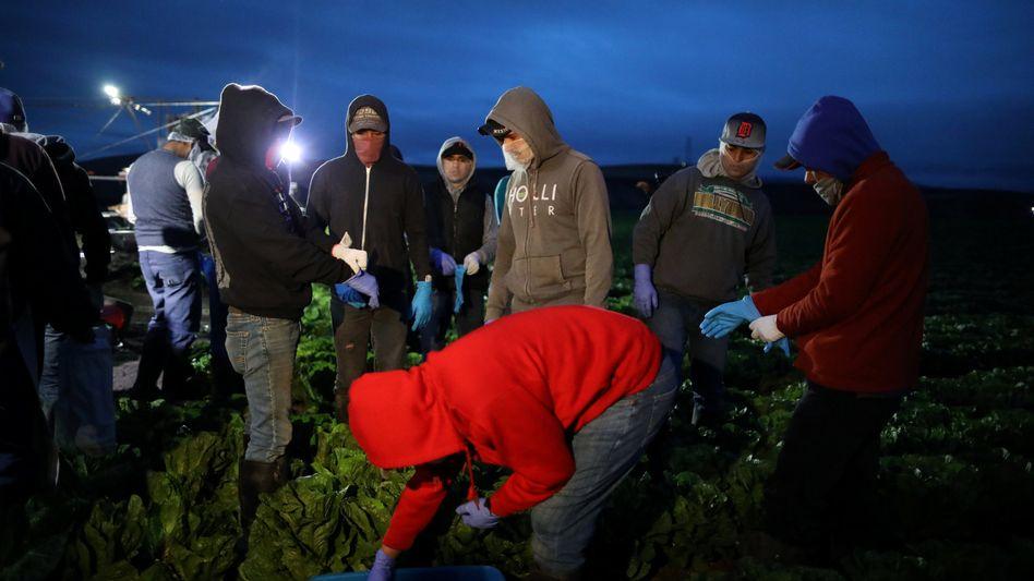 Arbeitsmigranten in den USA