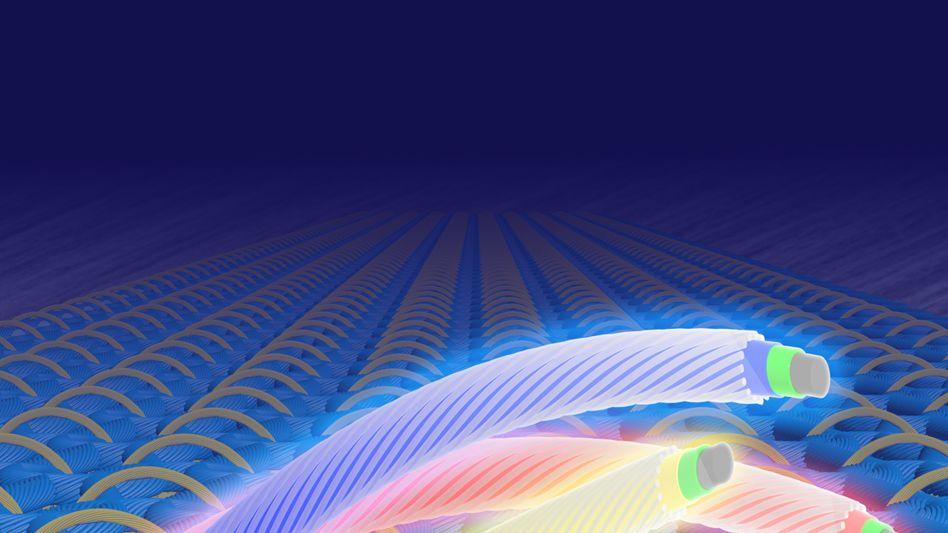 Neuer Trend: Lichtaussendende elektrochemische Zellen auf Polymerbasis
