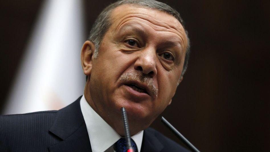 Türkischer Regierungschef Erdogan: Umstrittener Besuch in Wien