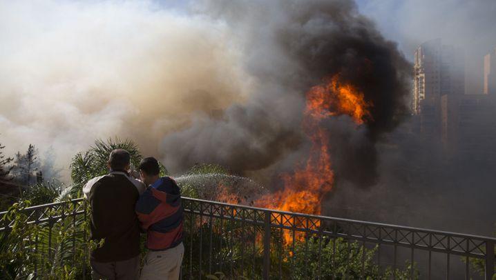 Israel: Buschfeuer in Haifa