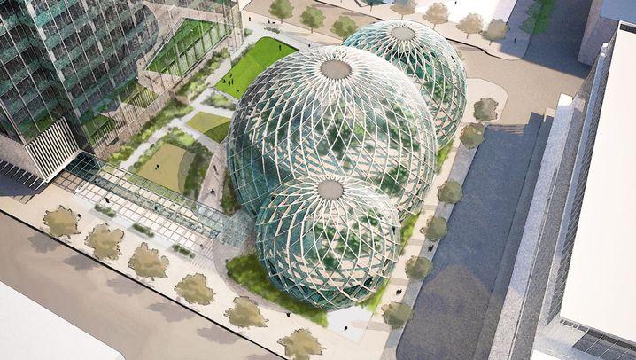 Amazon-Neubauprojekt: Arbeiten in der Glaskugel
