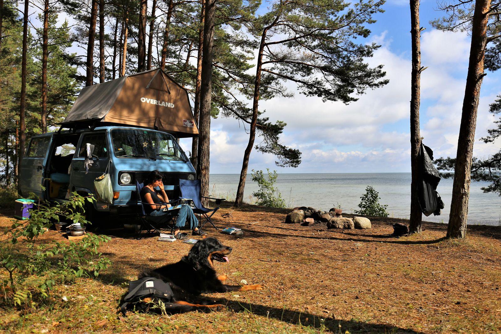Reise / Campingvan