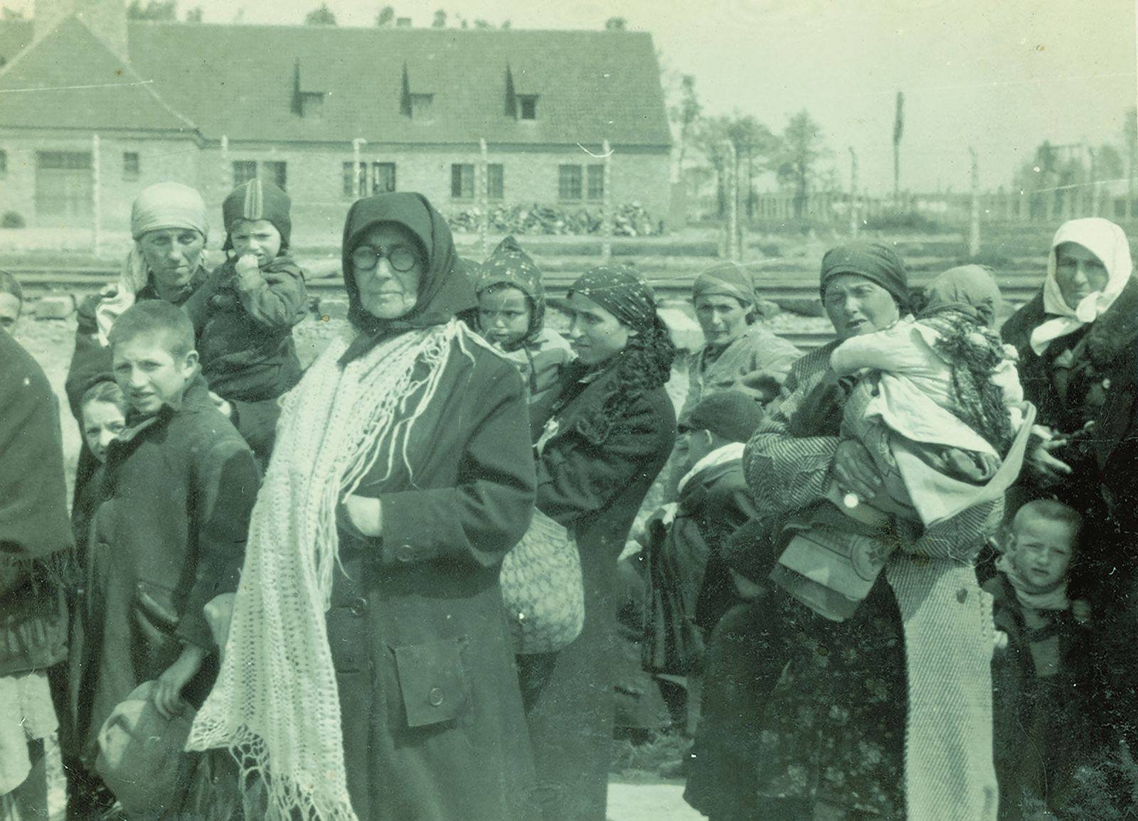Auschwitz Lili jacob Album