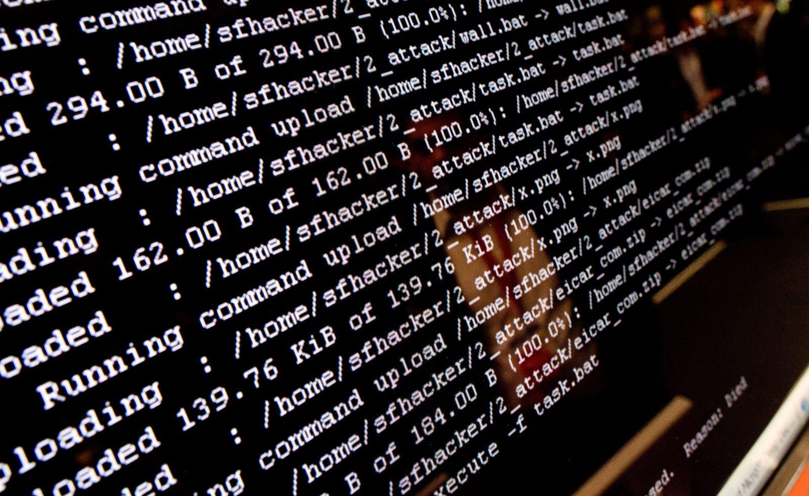 Cybersicherheit / Hacker