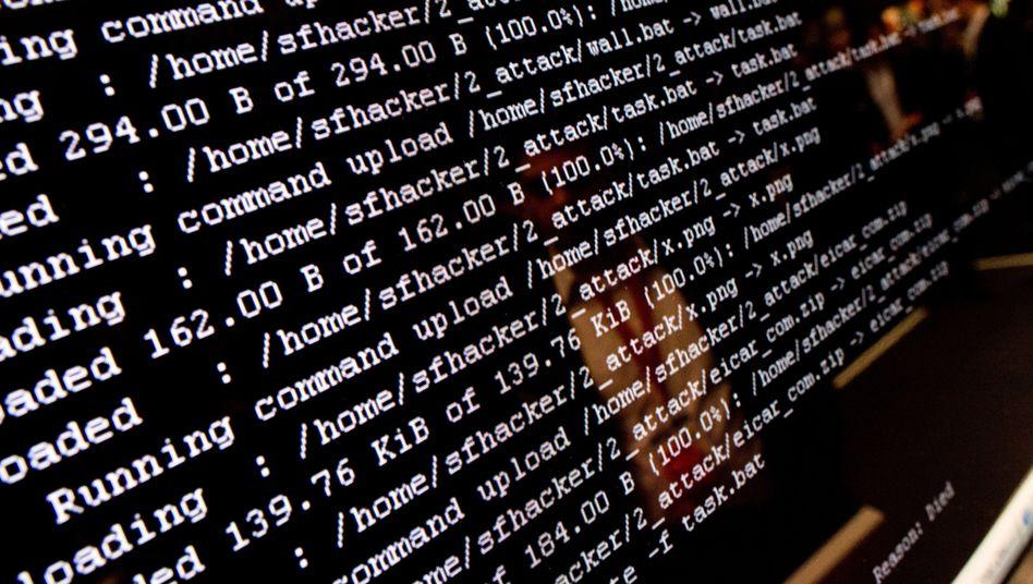 """""""Shitrix"""" erlaubt das Vordringen in Behörden- und Firmennetzwerke"""