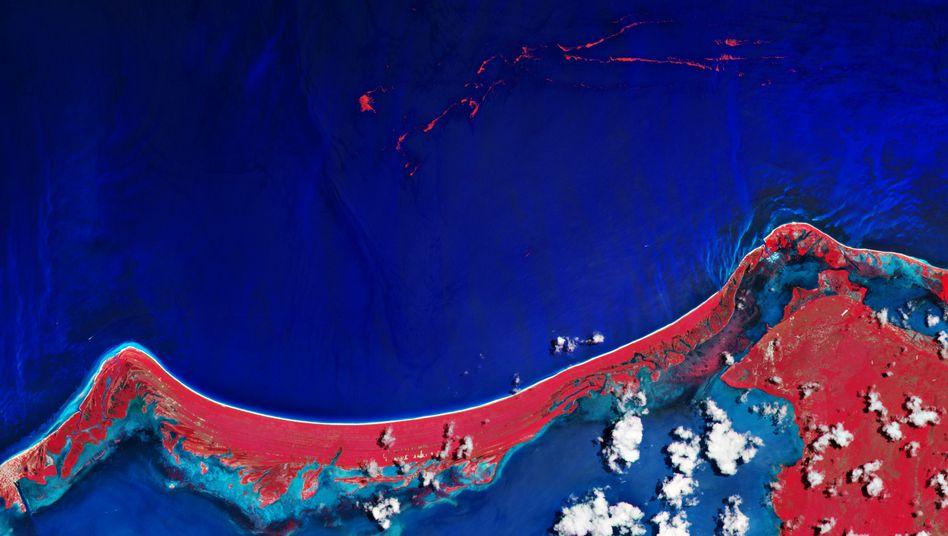 Insel Holbox in Quintana Roo, Mexiko